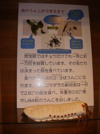 うんこ①_350.jpg