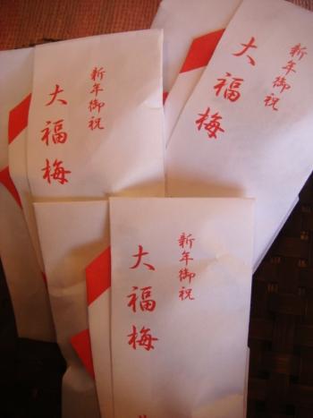 大福梅3_350.jpg