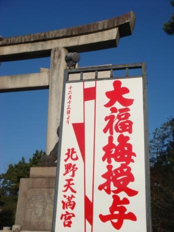 大福梅_350.jpg
