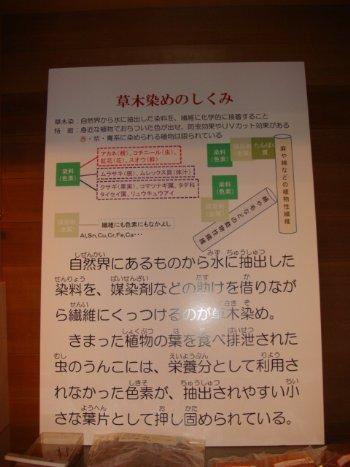 草木染のしくみ_350.jpg